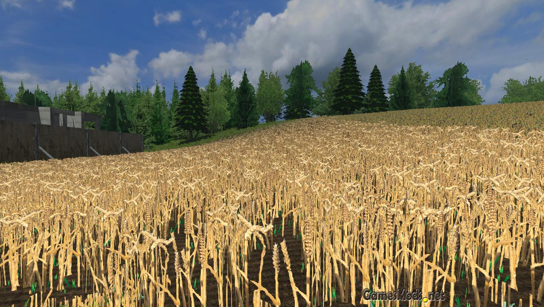 Wheat texture » GamesMods.net - FS17, CNC, FS15, ETS 2 mods