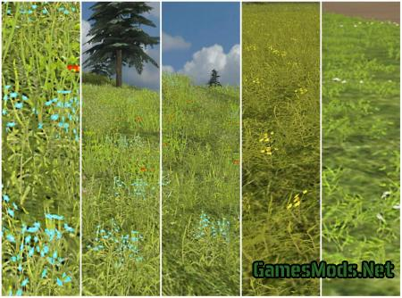 DAHEMAC'S GRASS TEXTURE WITH FLOWERS V2