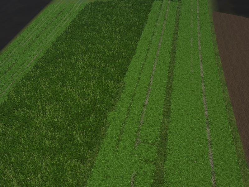 New Grass Texture V