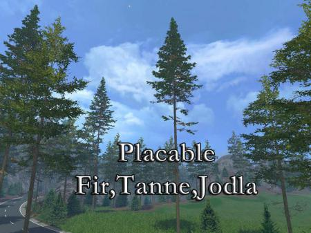 FIR PLACABLE V1