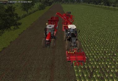 MANOR FARM V2