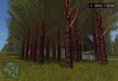 REDWOOD TREES V1.0