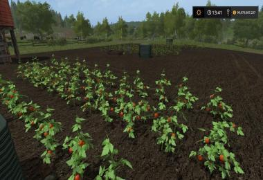 PLACEABLE TOMATO FIELD V1.0
