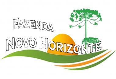 MAP FAZENDA NOVO HORIZONTE V1