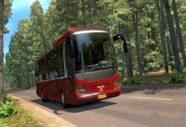 MAN LIONS REGIO BUS 1.27.X