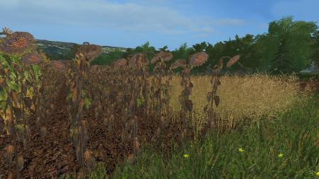 Forgotten Plants - Textureset