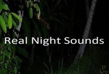 REAL NIGHT SOUNDS V1.0