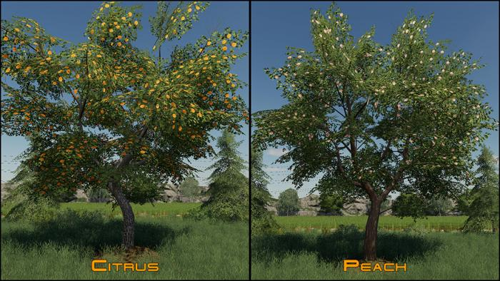 Placeable Fruit Trees Pack